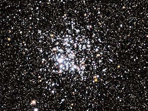 Скопле́ние Ди́кая У́тка (англ. Wild duck cluster, также известное как М 11, Мессье 11 или NGC 6705) — рассеянное звёздное скопление в созвездии Щита.
