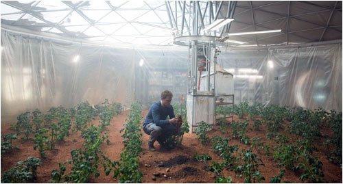 """Кадр из кинофильма """"Марсианин"""" где забытый астронавт сумел выжить на Марсе с помощью выращивания картофеля в марсианском грунте"""